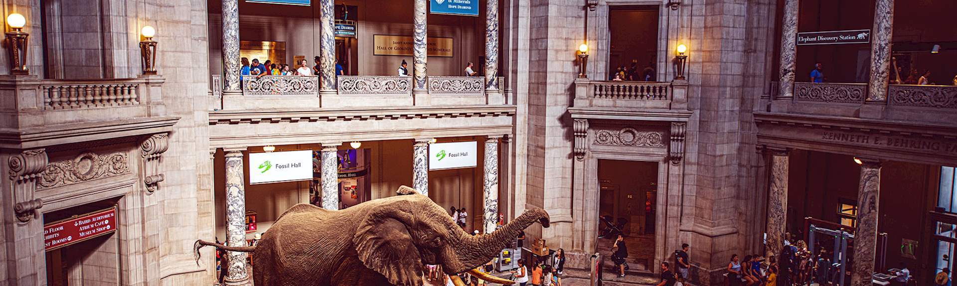 Smithsonian Museums at Washington, District of Columbia
